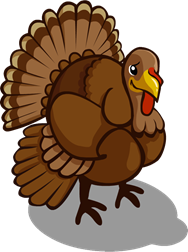 Cartoon Turkey